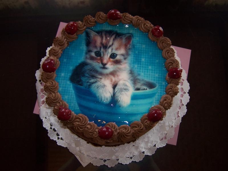 cicás torta képek TORTÁK   Fényképes torta   Vén Duna Cukrászda cicás torta képek